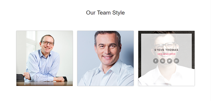 Bootstrap Responsive Our Team Style