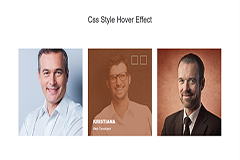Bootstrap Style Hover Effect