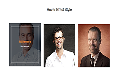 Bootstrap Responsive Hover Effect Style