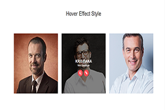 Bootstrap Simple Hover Effect Style